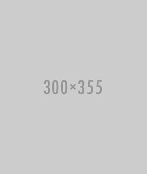 300x355